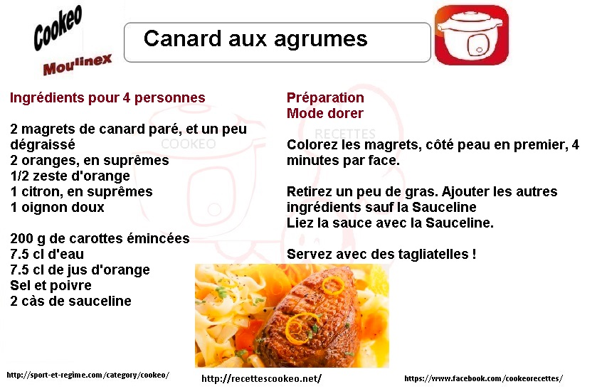canard-aux-agrumes-fiches